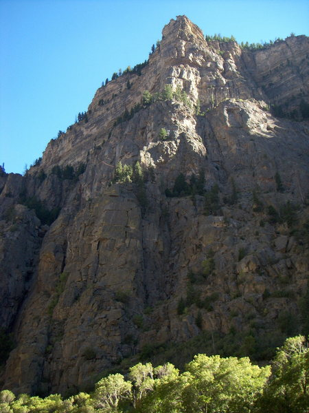 Rock Climbing Photo: The International Buttress in Glenwood Canyon.