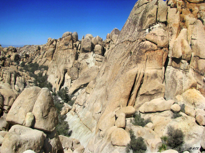 Rock Climbing Photo: Inauguron Dome in the foreground and Elephant Arch...