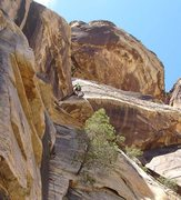 Rock Climbing Photo: At this point the difficulties are behind you.