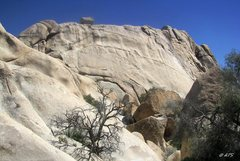 Rock Climbing Photo: The long dike in the middle of the Disneyland Dome...