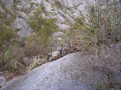"Rock Climbing Photo: The ""garden of bleedin'"" gun sight for t..."