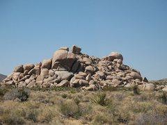 Rock Climbing Photo: Rocky Marciano from the south, Joshua Tree NP
