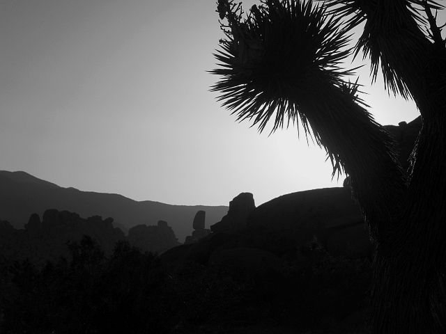 Rock Climbing Photo: Looking west to the Lost Pencil, Joshua Tree NP