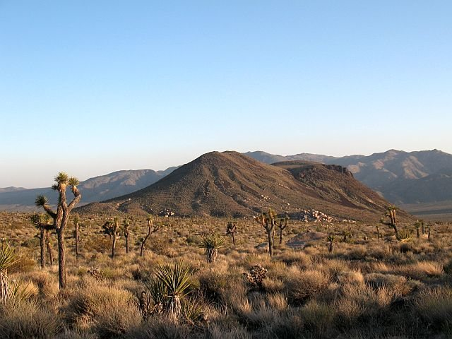 Malapais Hill from the vicinity of Slashface, Joshua Tree NP