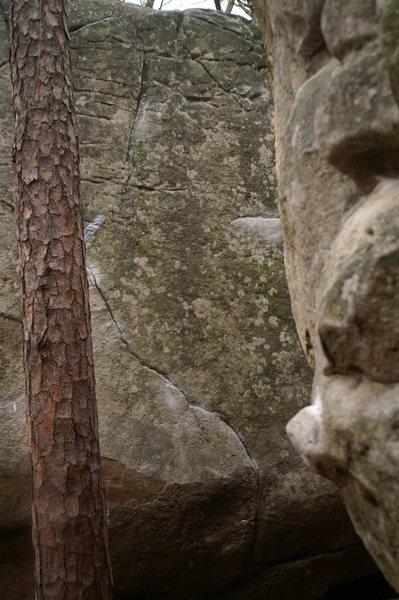 Rock Climbing Photo: Slabolicious