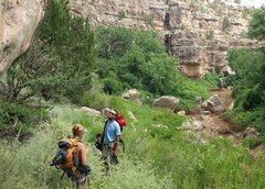 Rock Climbing Photo: scoping out jacks