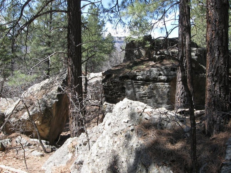 View of the boulder standing on the path facing left.