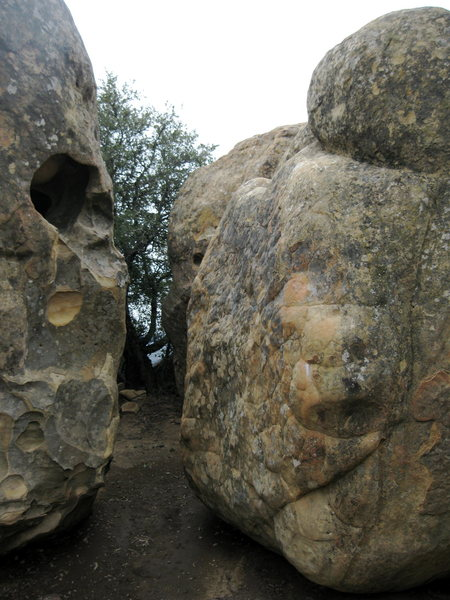 Rock Climbing Photo: Steve Edwards' project goes up the face just left ...