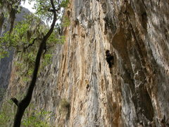 Rock Climbing Photo: if i remember right this is body groovin 12c, el s...