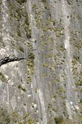 Rock Climbing Photo: Climbing with Annie on Pitch 2 or 3 of Jungle Moun...