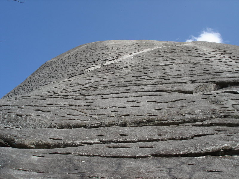 Looking up at The Nose, the classic 5.8 on Looking Glass Rock, NC