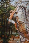 Rock Climbing Photo: facelift