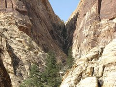 Rock Climbing Photo: Gunsight Notch