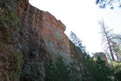 Rock Climbing Photo: Walt's Wall Left