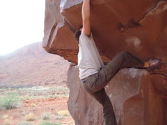 "Rock Climbing Photo: ""Brown Power"""