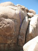 Rock Climbing Photo: Srepopers Roid (5.10b), Joshua Tree.