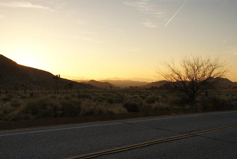 Rock Climbing Photo: Sunset brought to you by Joshua Tree