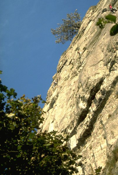 High on the 1st pitch of Lyme Cryme, 5.10d