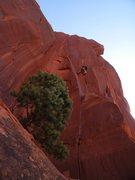 Rock Climbing Photo: Adam on Extra Lean