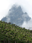 Rock Climbing Photo: Mount Kenya from the Mackinder Valley.