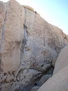 Rock Climbing Photo: Boulderado