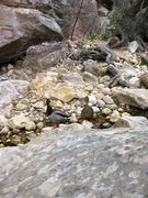 Rock Climbing Photo: I met up with these scramblers upstream in the Nor...