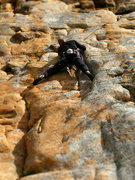 Rock Climbing Photo: Morgul Khan(18*), Mitre Rock.