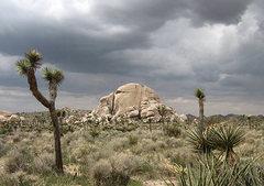 Rock Climbing Photo: King Dome. Photo by Blitzo.