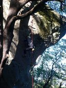 "Rock Climbing Photo: Working the crux of the Castle Rock's ""Pucker..."