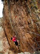 Rock Climbing Photo: Couch Potato xhb