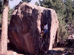 Rock Climbing Photo: Buffalo Gold hb