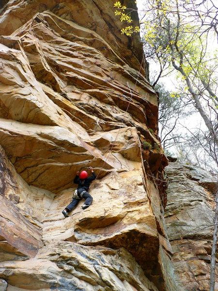 Rock Climbing Photo: Huong getting after Varmint, Leda, TN.