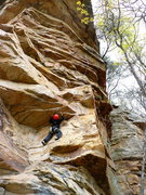 Rock Climbing Photo: Huong getting after Varmint, Leda, TN.