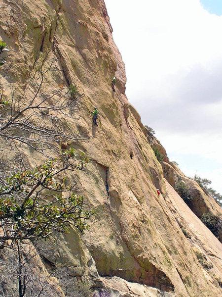 A group of Bean Fest-ers climbing