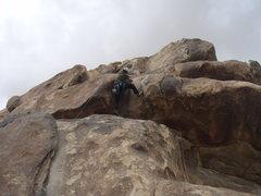 Rock Climbing Photo: Myrmecocystus Ewarti