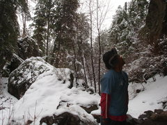 Rock Climbing Photo: Allix wondering why we're climbing in the snow aga...