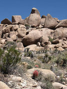 Rock Climbing Photo: Beak Boulders. Photo by Blitzo.