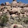 Beak Boulders.<br> Photo by Blitzo.