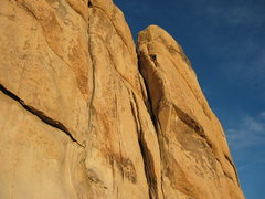 Rock Climbing Photo: Hidden Valley camp ground, Joshua Tree, CA