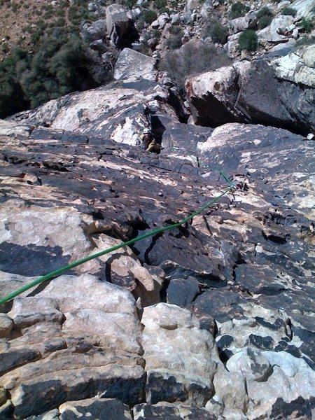 Rock Climbing Photo: Birdland p2