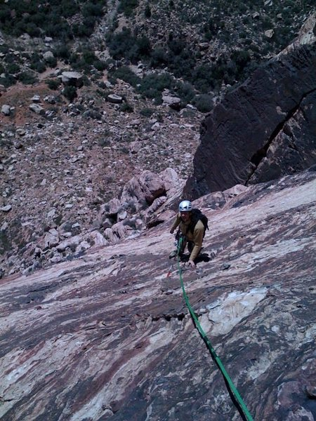 Rock Climbing Photo: Birdland p4