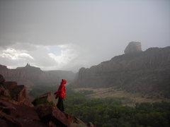 Rock Climbing Photo: Dave C. in Indian Creek