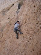 Rock Climbing Photo: Jenny pulling the delicate moves amidst a sea of a...