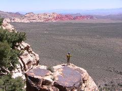 Rock Climbing Photo: More Red Rocks.