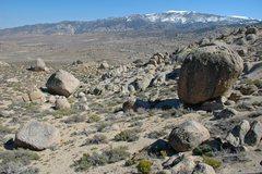 Rock Climbing Photo: The 'Pollen Grains/Lidija Boulders'