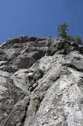 Rock Climbing Photo: well when i set up this rope i thought it was a ro...