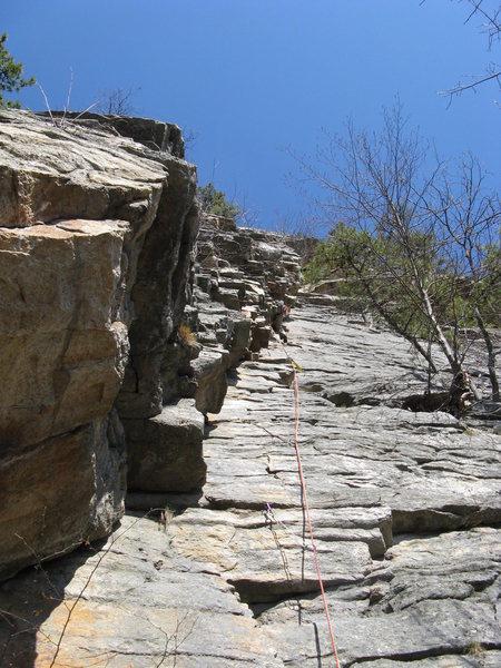 Rock Climbing Photo: Bloody Bush