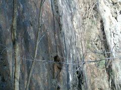Rock Climbing Photo: Misc Pic's of Birdsboro