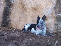 Rock Climbing Photo: cool soil