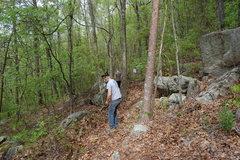 Rock Climbing Photo: Bradley Killough doing his part on the trail.